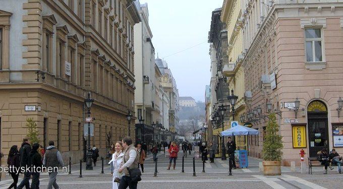 Reisblog Boedapest: Pest