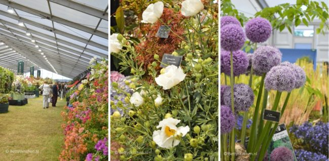 hampton_court_palace_flower_show_oceanspray_londen_16-001