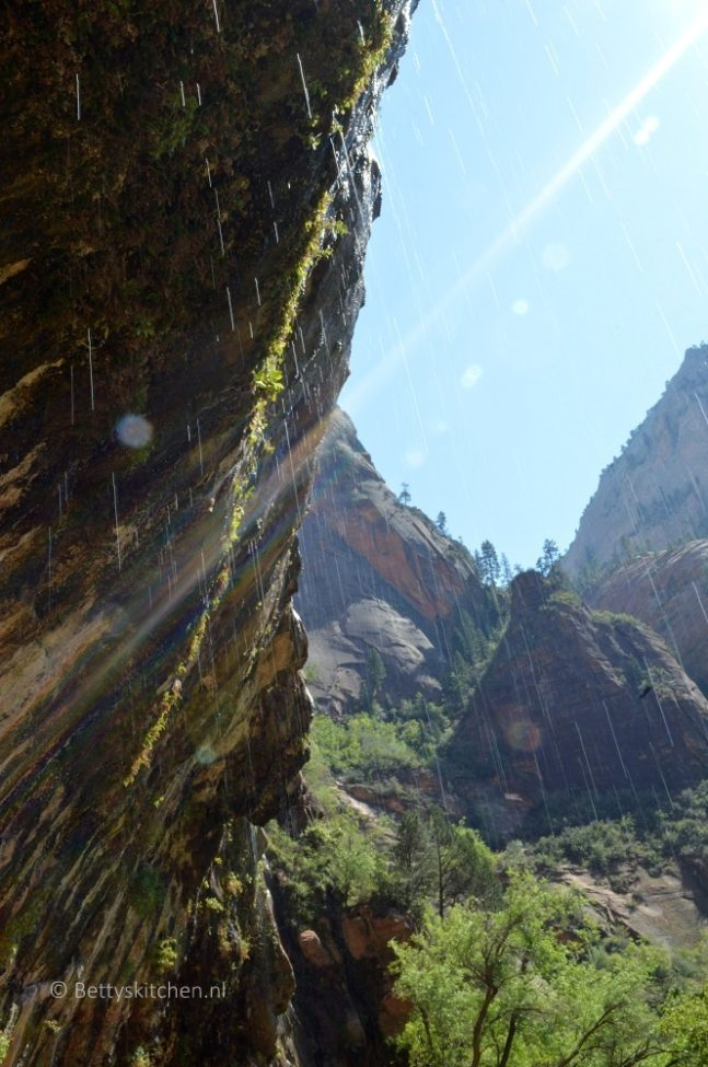 zion_np_weeping_rock-001