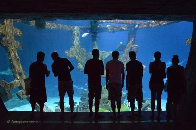 las_vegas_shark_reef_mandalay_bay
