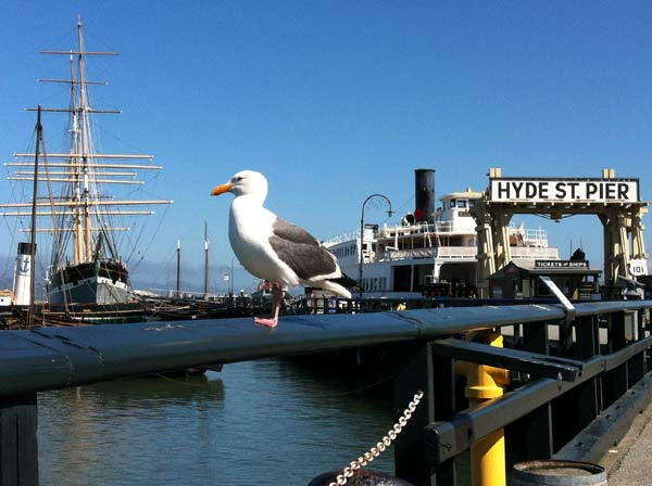 san_francisco_hyde_street_pier