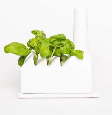 cadeau_cadeau_nl_green_industrie_basilicum