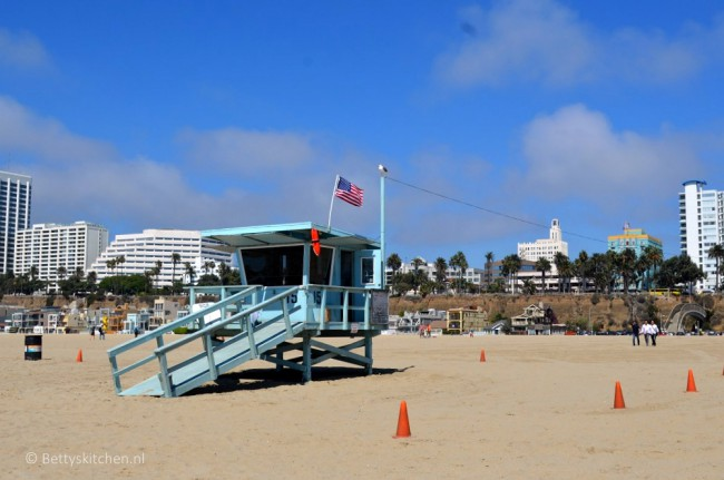 los_angeles_santa_monica_beach-001