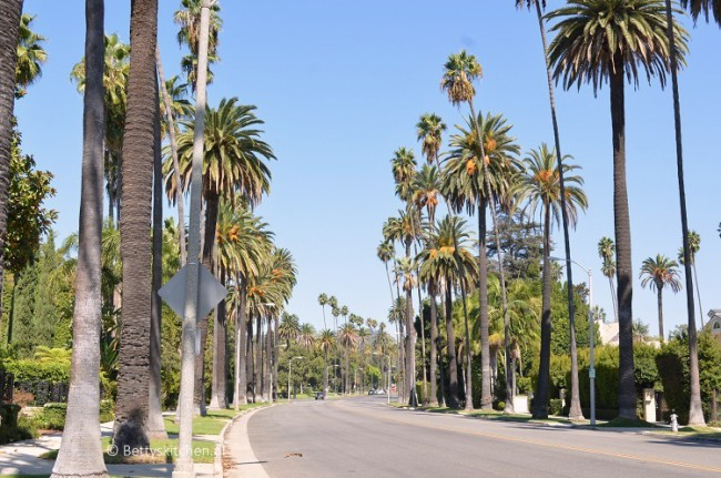 los_angeles_santa_monica_beverly_hills_drive-001