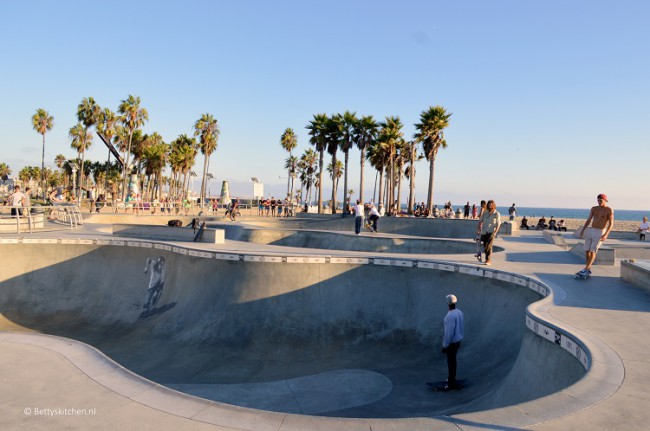 los_angeles_santa_monica_venice_beach_skate_park-001