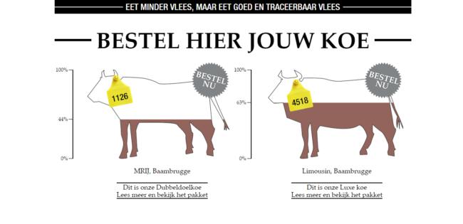 koopeenkoe_nl_2