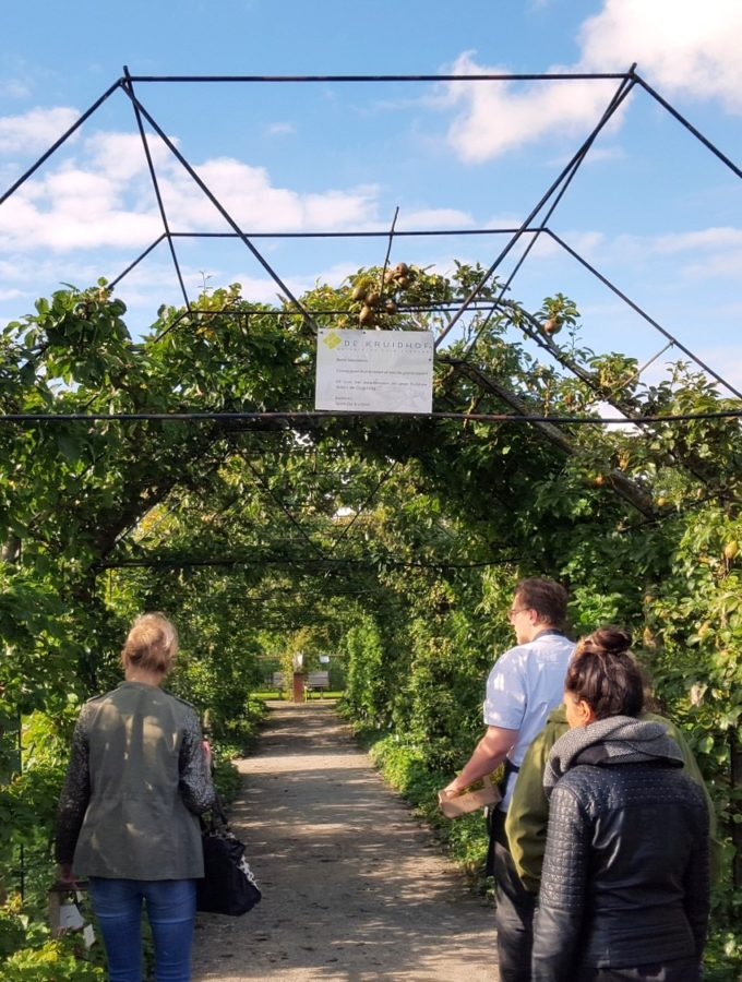 botanische tuin de kruidhof + tuincafe in Buitenpost vlakbij leeuwarden in friesland