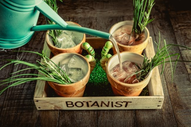 things_to_do_in_newcastle_the_botanist_2