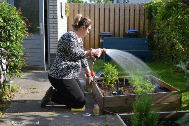 inspiratie voor de eetbare buitentuin moestuin verticale tuin fonq bettyskitchen