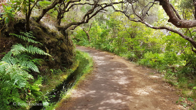 Levada wandeling
