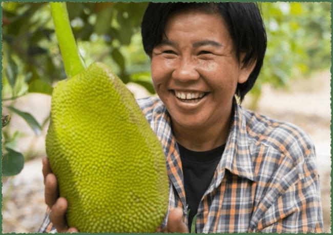 recept vegan kapsalon met jackfruit fairtrade