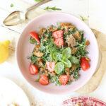 recept met oud brood panzanella salade met aardbeien