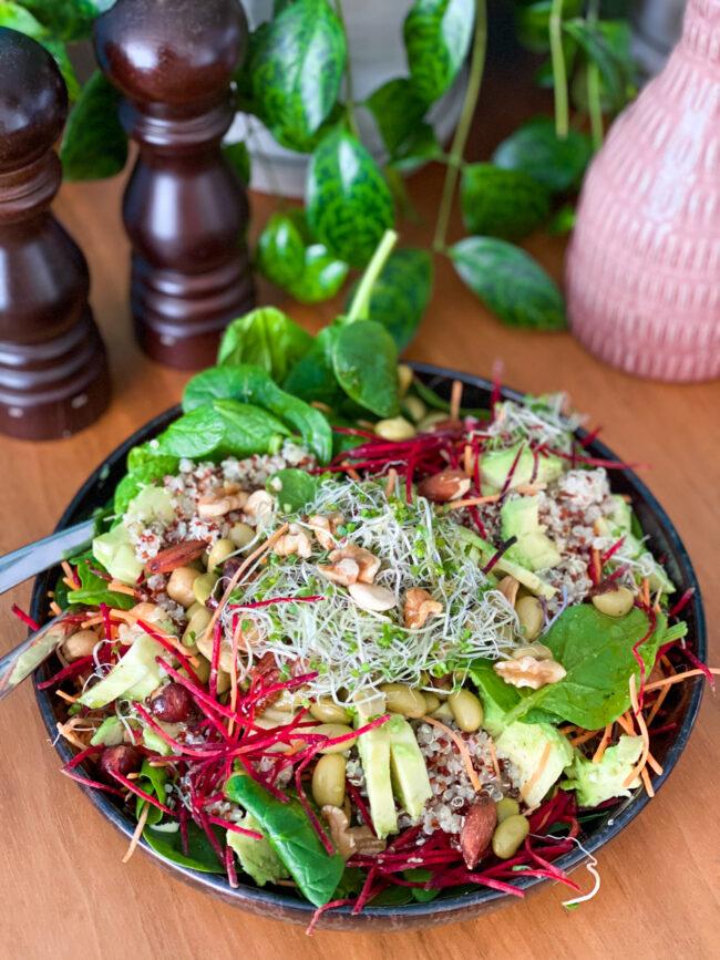 salade met quinoa pre-tox sapvasten